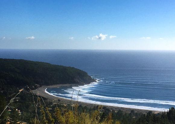 ¡Nuestras playas valen el esfuerzo! La batalla por Puertecillo continúa